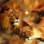 Репродукция Львиная семья 50х70