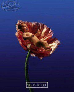 Репродукция Малыш в цветке 40х50